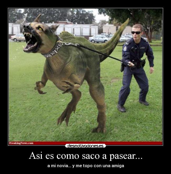 carteles velociraptor pastor aleman dog angry novia rabiosa duro todo jurassic park desmotivaciones