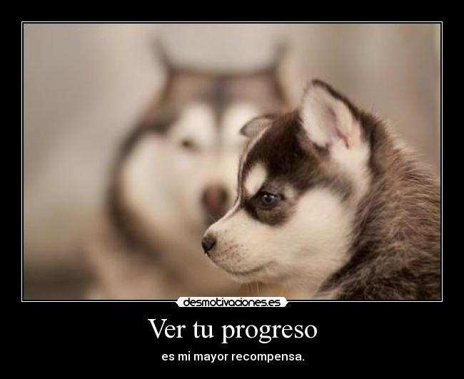Ver tu progreso - es mi mayor recompensa.