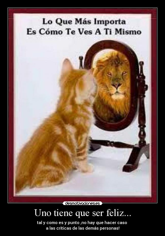 Resultat d'imatges de imagen reflejo gato leon