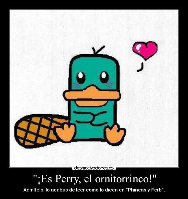 FOTOS DE PHINEAS Y FERB - IMAGENES DE PERRY EL ORNITORRINCO