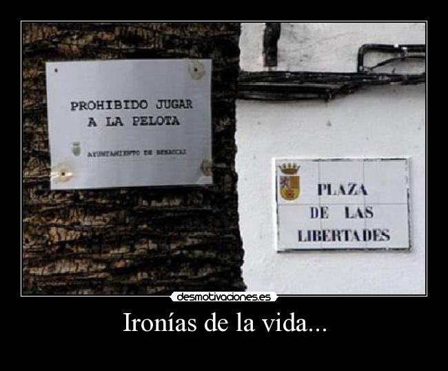 carteles vida sorry for party rocking ironia vivan las ironias imaxi zaida yz3 desmotivaciones