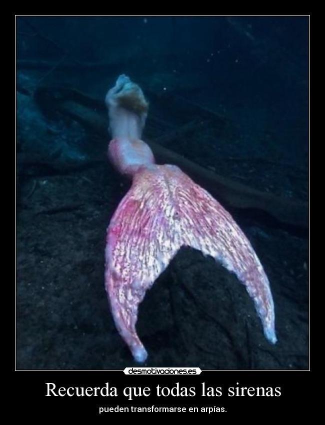 Recuerda Que Todas Las Sirenas Desmotivaciones