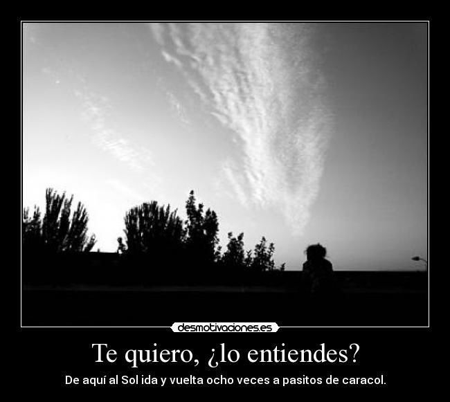 Te quiero, ¿lo entiendes?