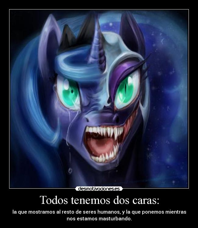 carteles pido perdon por descripcion tan vulgar little pony princess luna desmotivaciones