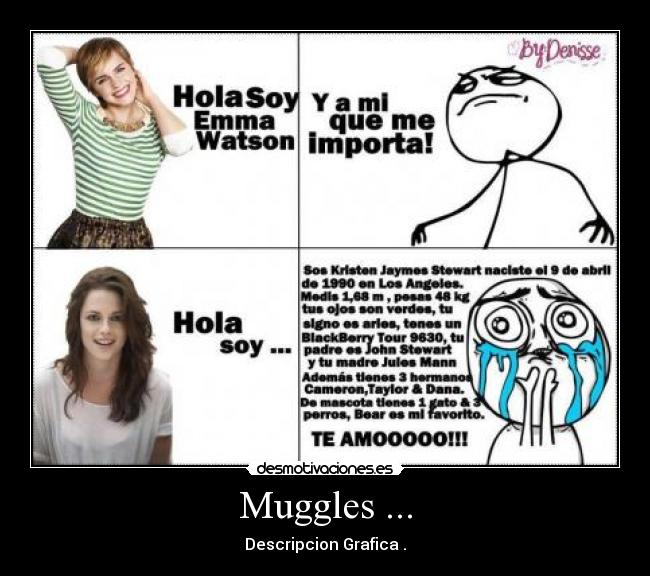 Muggles ... - Descripcion Grafica .