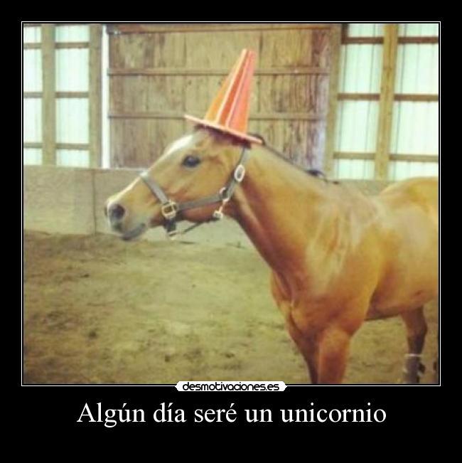 carteles unicornio algun dia desmotivaciones