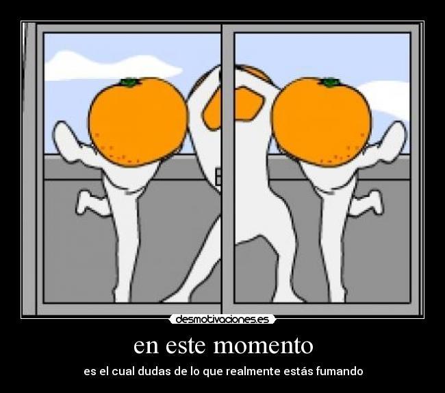 Carteles y desmotivaciones de una mandarinas bailando en el balcon wtf