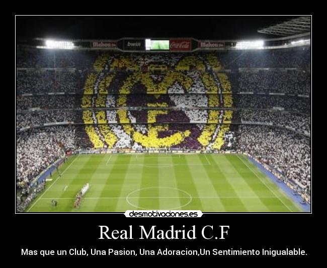 frases para envidiosas facebook wallpapers real madrid