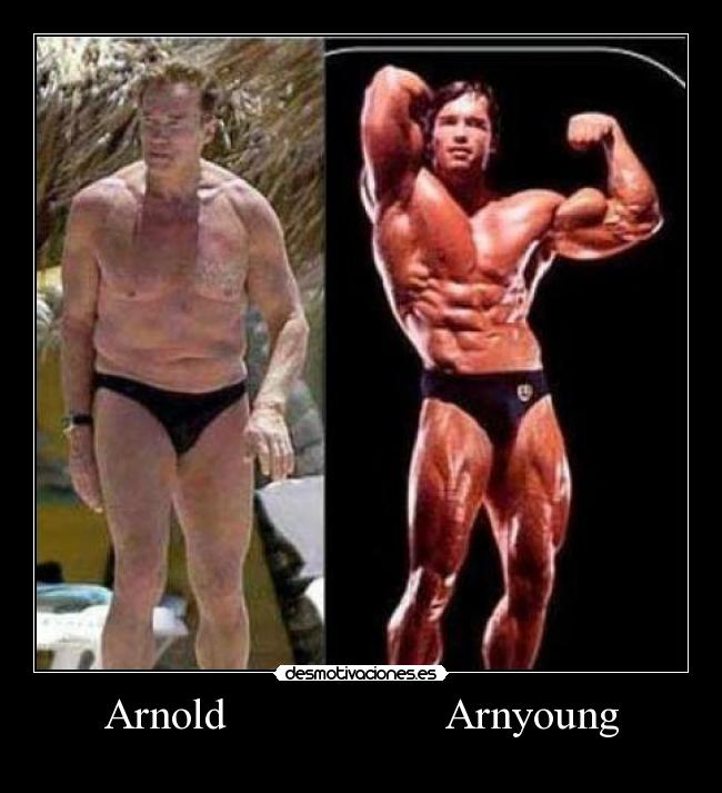 Arnold                    Arnyoung -