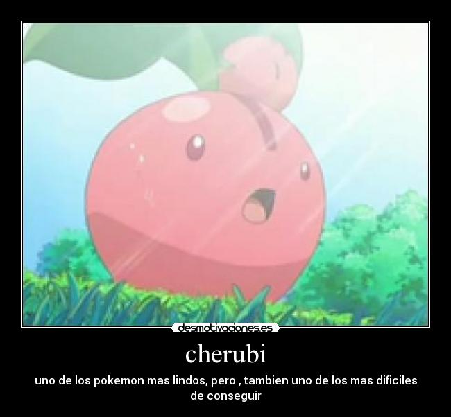 Pokemon Cherubi Memes