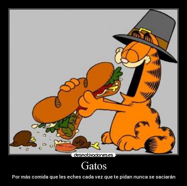 Carteles Y Desmotivaciones De Gatos  Ida Pedir Nunca Saciar Garfield