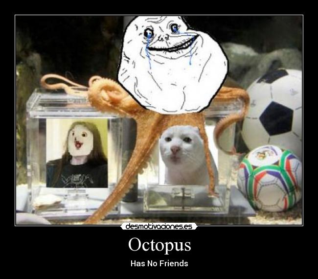 Octopus - Has No Friends