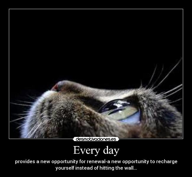 Every day - provides a new opportunity for renewal-a new opportunity to recharge yourself instead of hitting the wall...
