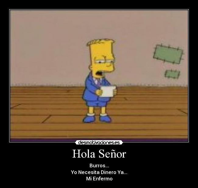 hola senior