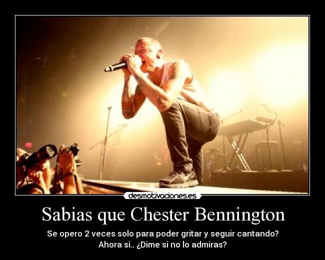 Sabias Que Chester Bennington Desmotivaciones