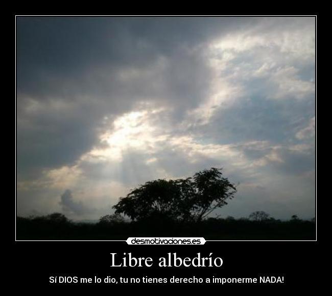 ShaniShaktiAnanda (PedroAGómezRuzzo): El Libre Albedrío