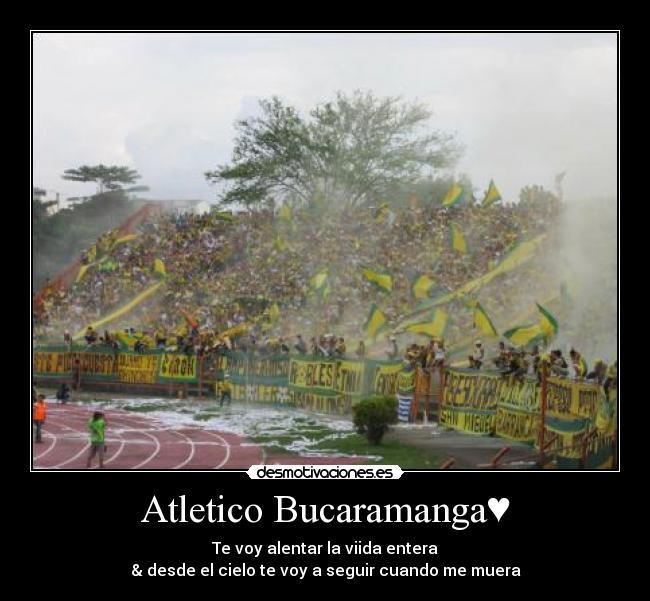 Atletico Bucaramanga Desmotivaciones