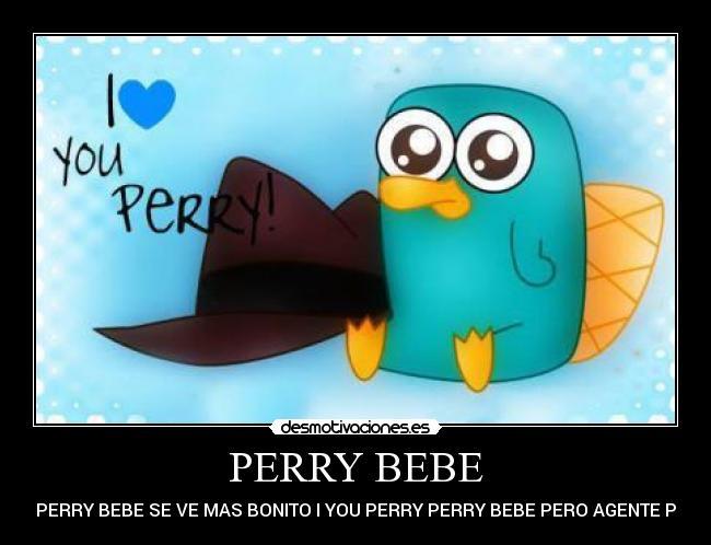 Perry el ornitorrinco bebé tierno - Imagui