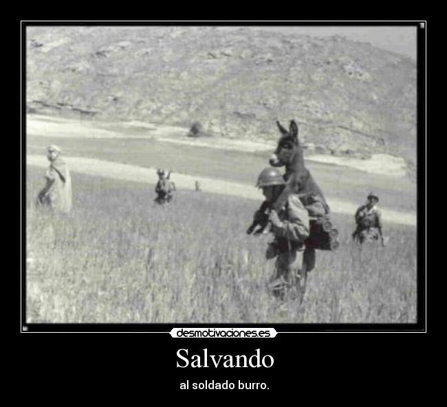 Carteles y Desmotivaciones de soldado burro