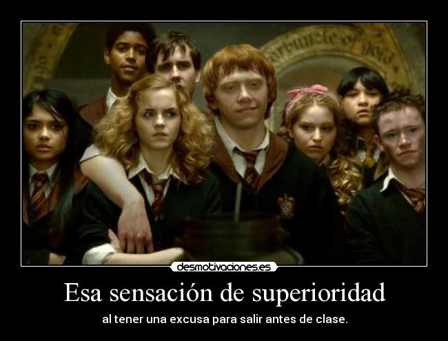 carteles cartel hermione weasley harry potter always desmotivaciones
