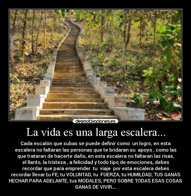 La vida es una larga escalera desmotivaciones for Que es una escalera