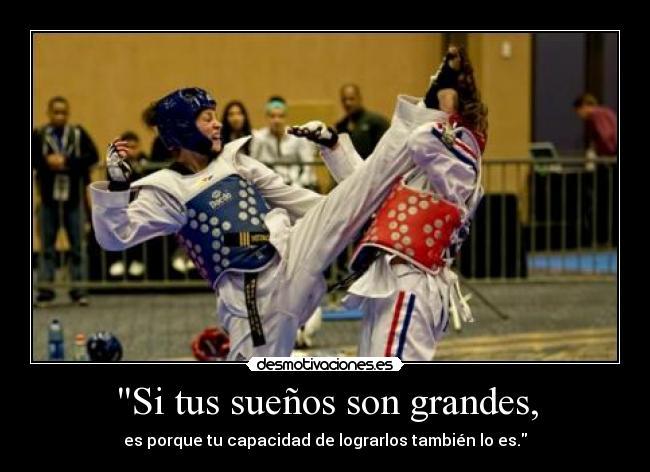 Carteles y desmotivaciones de carolena carstens taekwondo exito