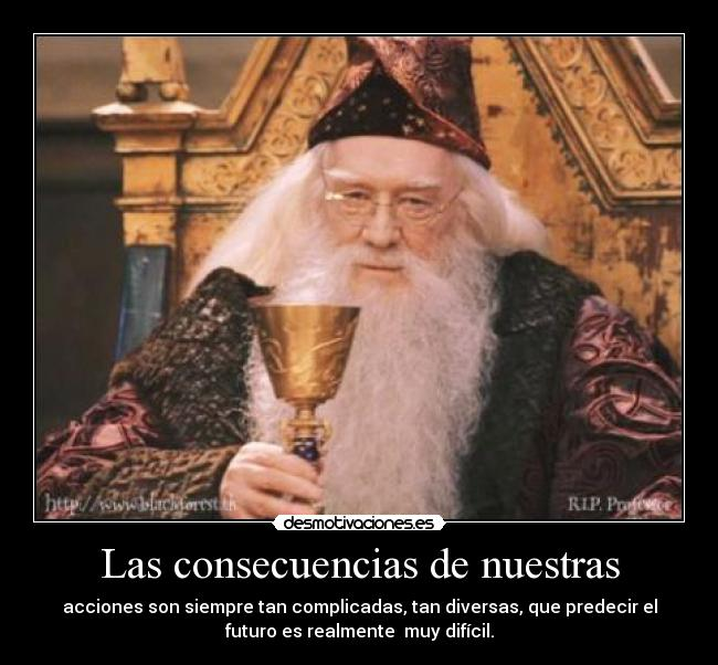 Qué tan gay será el nuevo Dumbledore interpretado