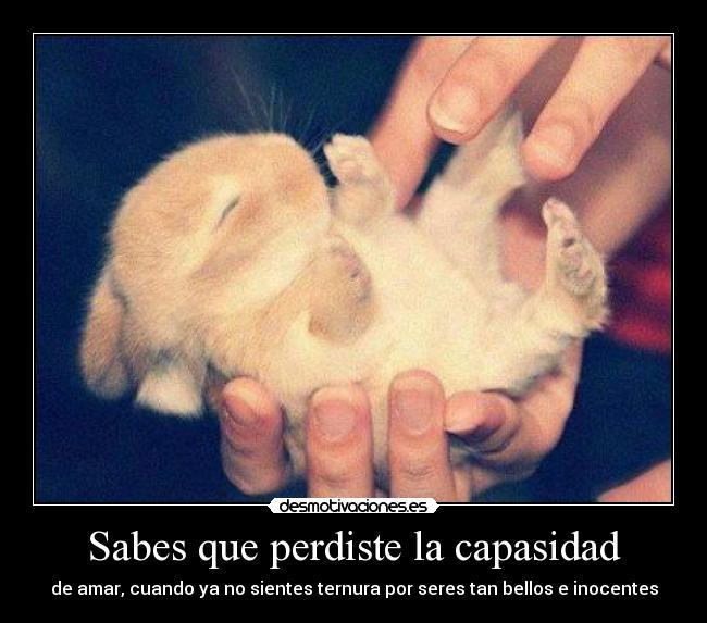 ternuras com: