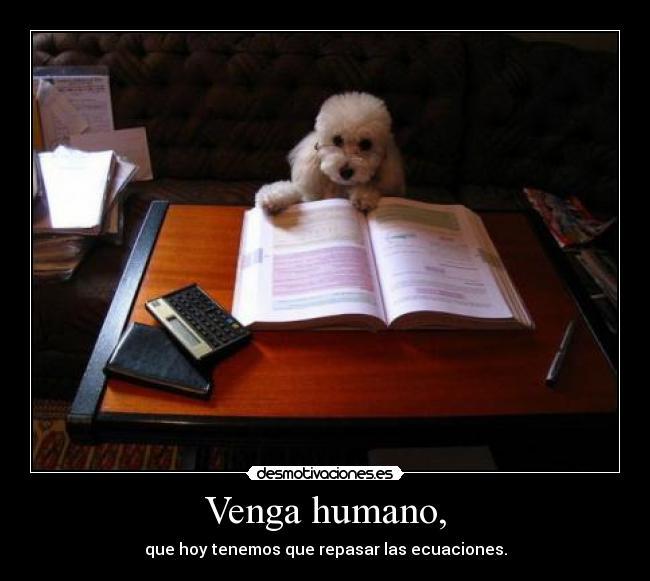 Funny Humano