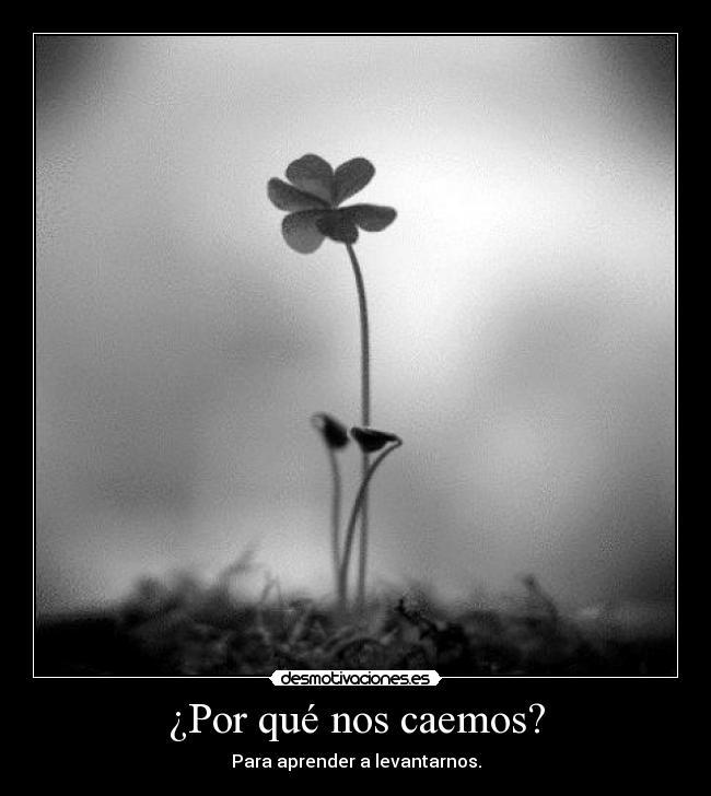 http://img.desmotivaciones.es/201207/tre_2.jpg