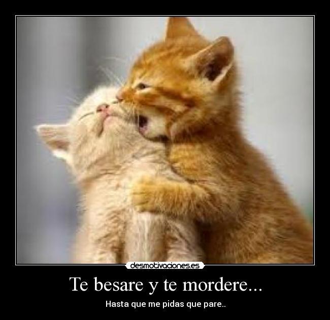 Un beso.-http://desmotivaciones.es/demots/201207/usru.jpg