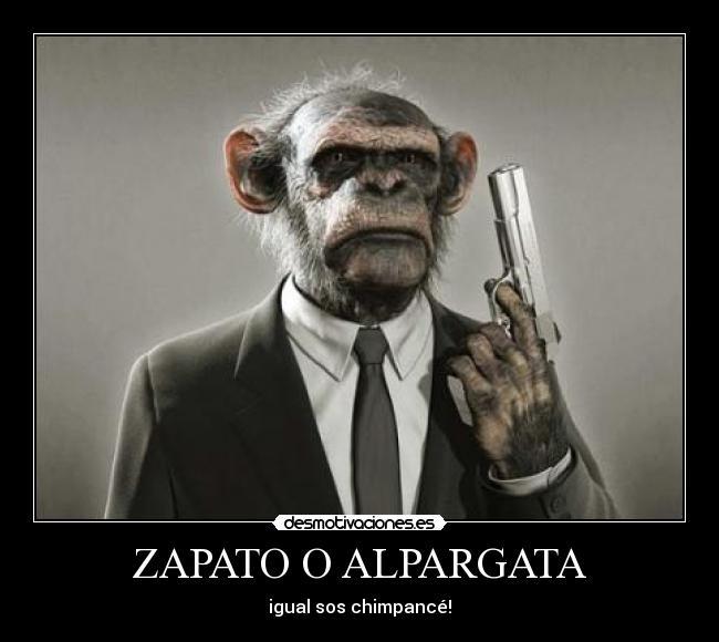 carteles chimpance alpargata mono zapato igual humano zapatilla ropa desmotivaciones