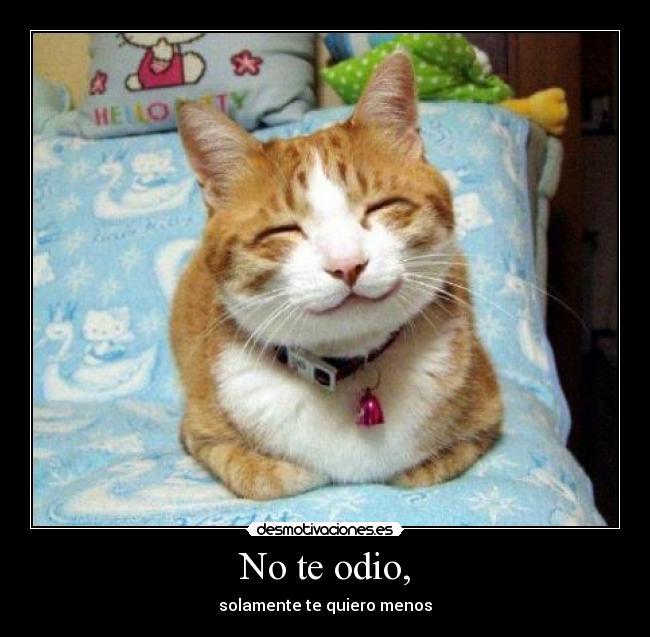 carteles odio risa burlona sarcasmo ironia gatoswalt desmotivaciones