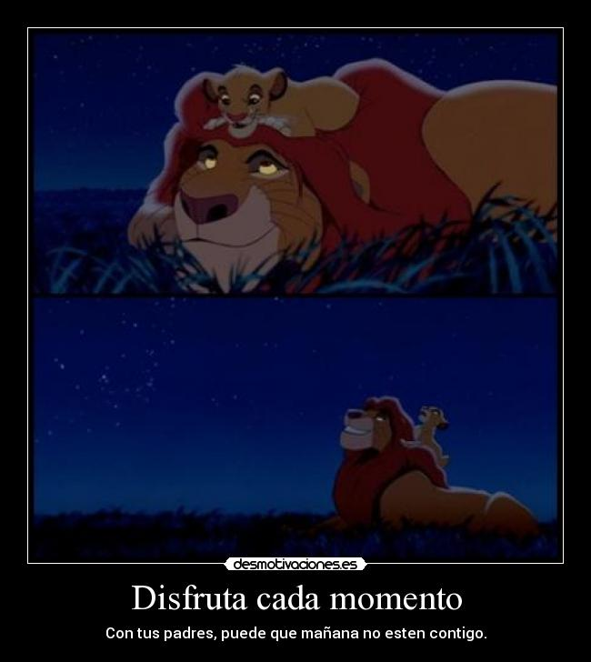 carteles simba mufasa the lion king desmotivaciones