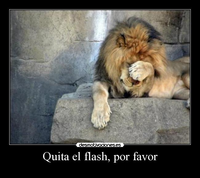 Quita el flash, por favor -