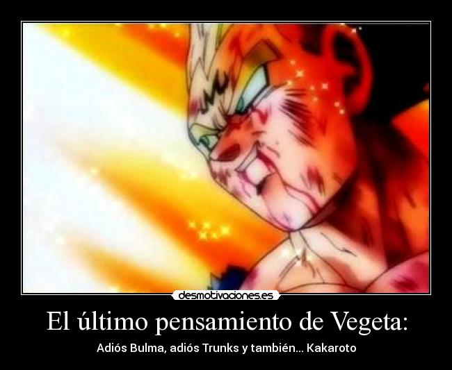 Goku and Vegeta Meme
