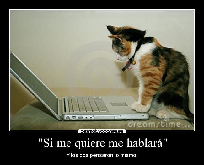 http://img.desmotivaciones.es/201209/1129945192SlsPaV.jpg