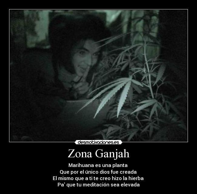Imagenes De Zona Ganjah | newhairstylesformen2014.com