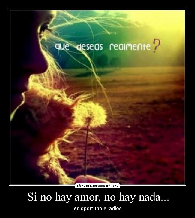Si No Hay Amor No Hay Nada Desmotivaciones