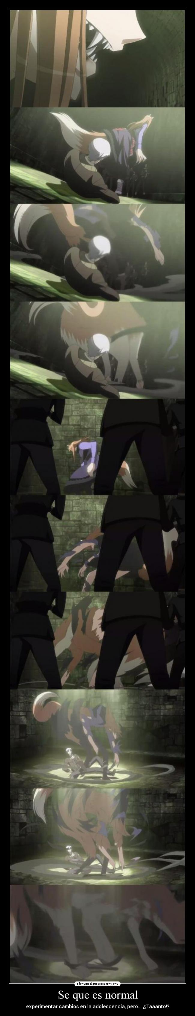 carteles raptorhunters nigatsu harukaze anime horo spice and wolf como adolescente 600 tacos desmotivaciones