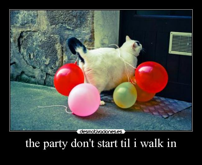 the party dont start til i walk in -