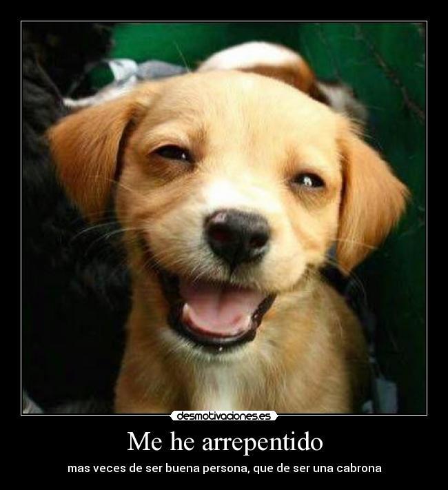 http://img.desmotivaciones.es/201210/perro.jpg