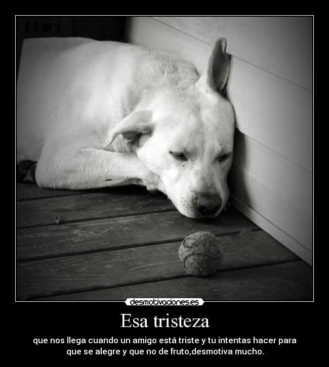 Frases para animar a una amiga triste (2) - Literato.es