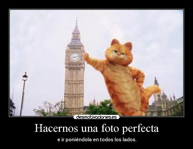 Garfield Lasana Project Cartel Garfield Corazon You Desmotivaciones