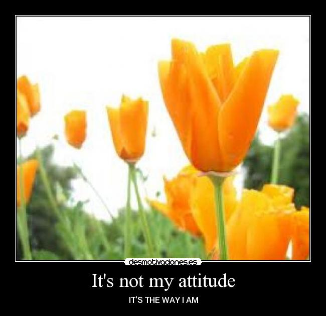 Its not my attitude - ITS THE WAY I AM