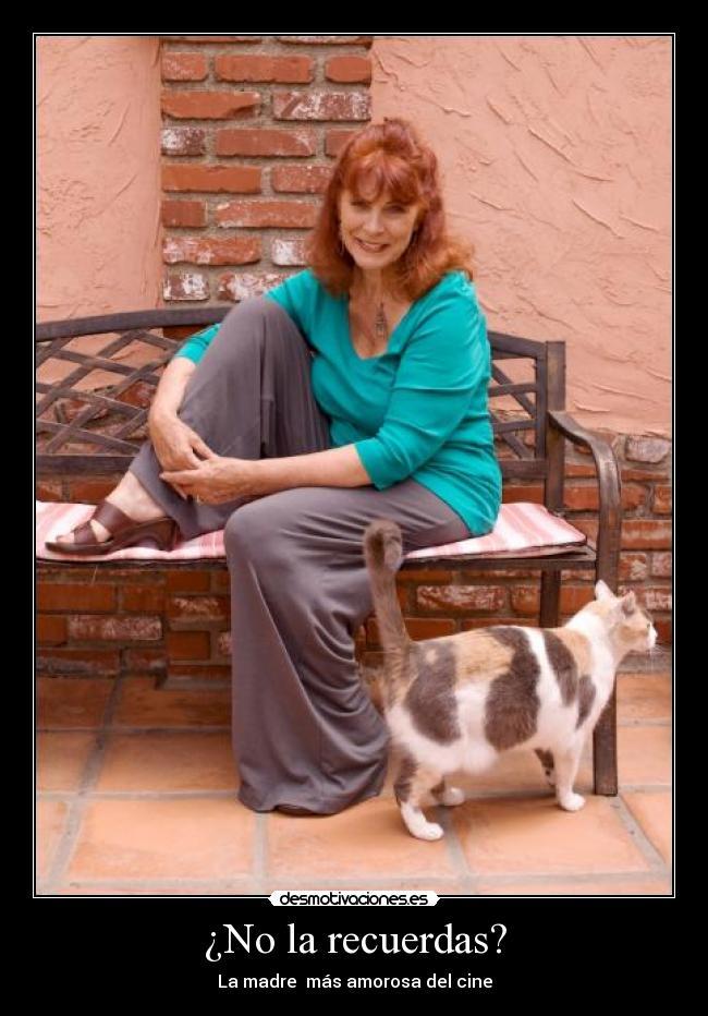 Recuerdos Amor Madre Cine Peliculas Adultos Kay Parker Desmotivaciones