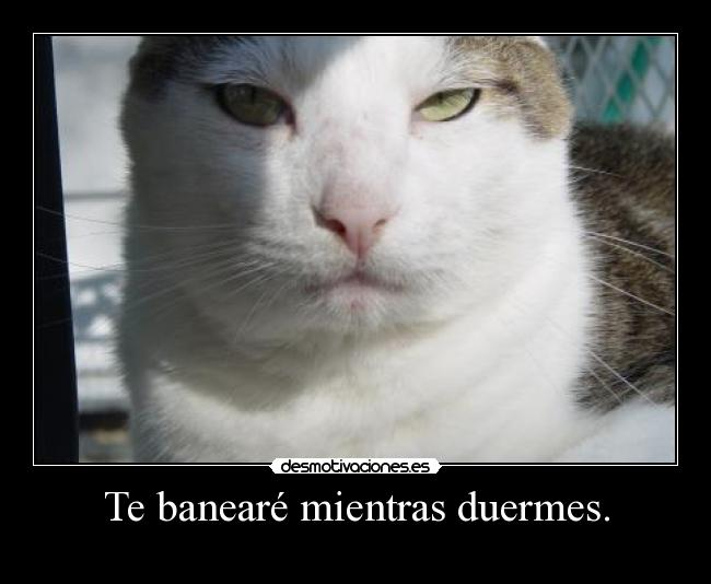Te banear mientras duermes. - 