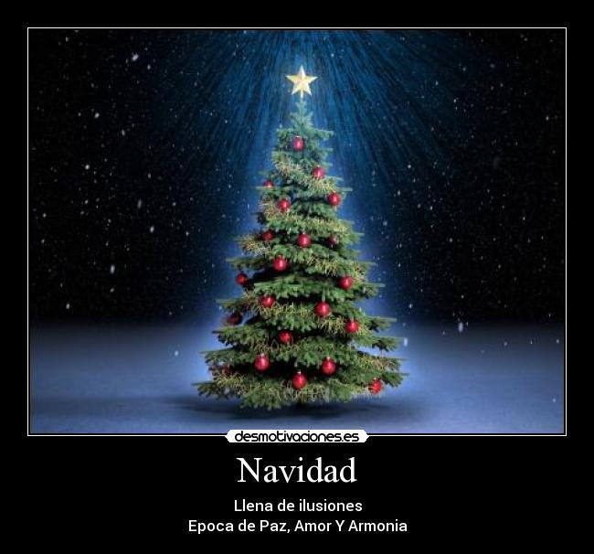 carteles navidad navidad paz armonia pino amor arbol bonito estrella