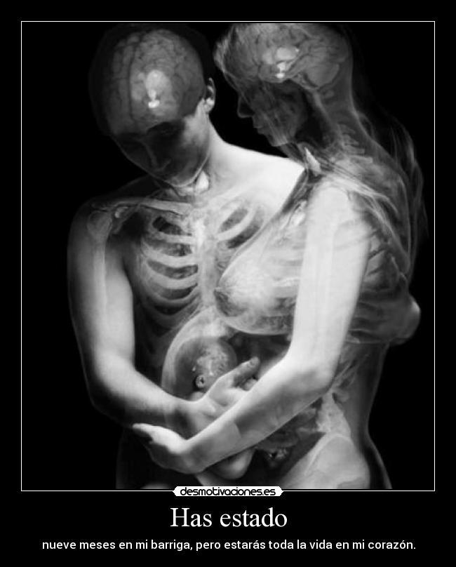 carteles embarazo barriga corazon desmotivaciones