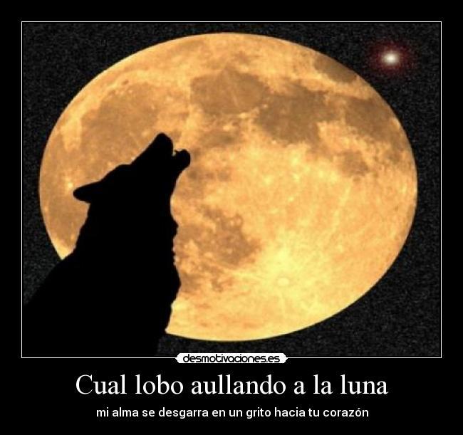 Cual Lobo Aullando A La Luna Desmotivaciones